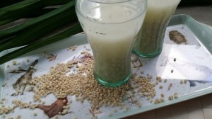 barley-water for pregnant women
