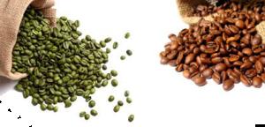 coffee_green and roasted varities natureloc