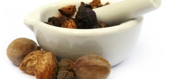 Triphala Three fruits – Amalaki, Bibhitaki and Haritaki (myrobalan plums)