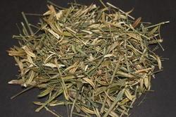 Kiriyath കിരിയാത്ത് Chirata Swertia chiratta Nilavepp നിലവേപ്പ് buy online natureloc