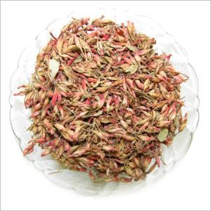 Woodfordia-Fruticosa Thathiripoovu , താതിരിപ്പൂവ് Fire-flame Bush buy natureloc