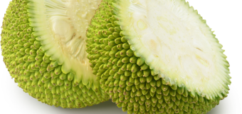 Unripe jackfruits – How mature jackfruits helps fight diabetes?