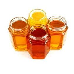 forest-honey-buy online natureloc