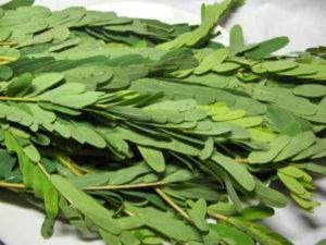agathi spinach cheera