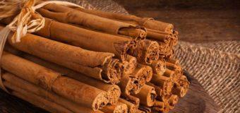 Ceylon cinnamon – True cinnamon (Cinnamon varieties)