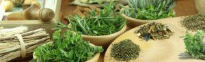 Aromatic digestives cinnamon fennel