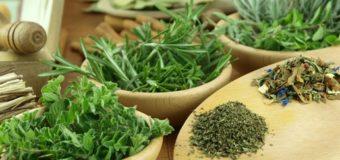 Aromatic Digestives – Cinnamon-Fennel