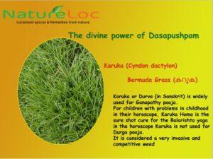 Karuka Dasapushpam