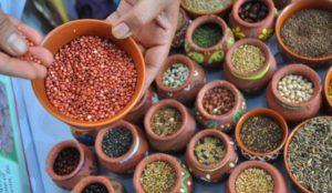 Mixed millet powder buy online