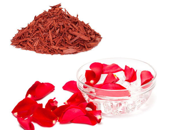 Red Sandalwood8