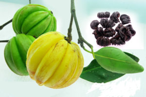 Kudampuli Pure Garcinia Cambogia Dried Fruits To Burn Fat