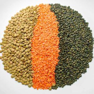 lentils-buy-online-natureloc
