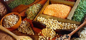 Pulses legumes-Surprising facts about pulses you might know