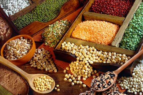 Pulses Legumes Surprising Facts About Pulses You Might Know