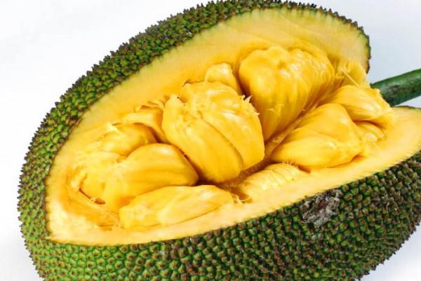 jackfruits-health-benefits-e1461218362877
