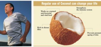 Coconut Products – Coconut Palm Jaggery – Coconut Palm Sugar