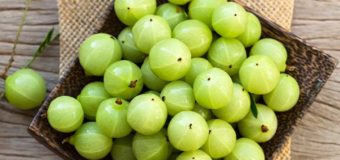 Amla (Phyllanthus Emblica) – The Indian Gooseberry