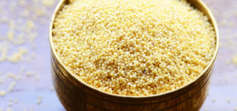 Foxtail Millet (小米) – Health Benefits, Uses, History