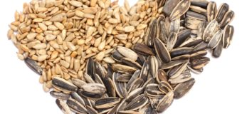 Mixed Edible Seeds – Why You Should Have Mixed Edible Seeds ?