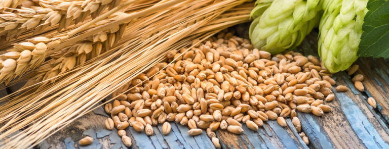 barley health benefits in tamil