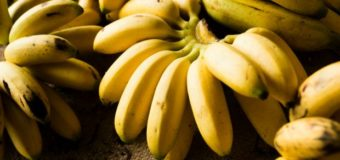 Bananas: 5 Astonishing Reasons To Start Eating Bananas Today