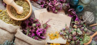 7 Homeopathy Medicinal Plants You Never Knew About