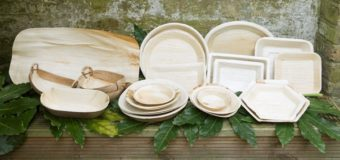 Palm Leaf : Nature's Gift – Why Use Disposable Palm Leaf Plates ?