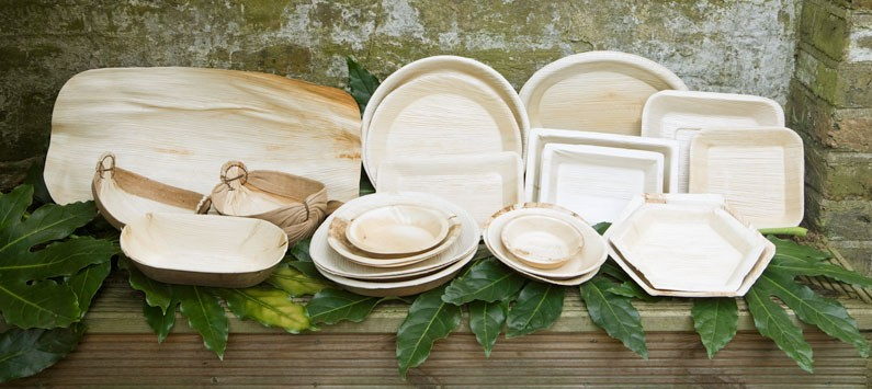 Palm Leaf Nature S Gift Why Use Disposable Palm Leaf Plates