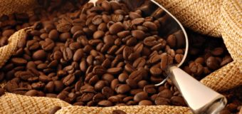 Health Benefits Of Coffee Beans – Why You Must Drink Coffee