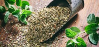 Oregano | Joy of the Mountains | 5 Best Health Benefits | NatureLoC