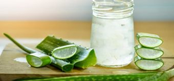 Aloe Vera | Why You Should Start Using Aloe Vera | Skin, Hair, Health Benefits