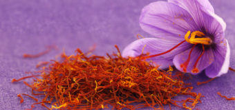 Saffron The World's Most Expensive Spice In The World