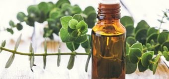 6 Significant Ayurvedic Herbs To Minimize Arthritis Pain During Winter