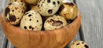 Quail Eggs-What Are Quail Eggs?