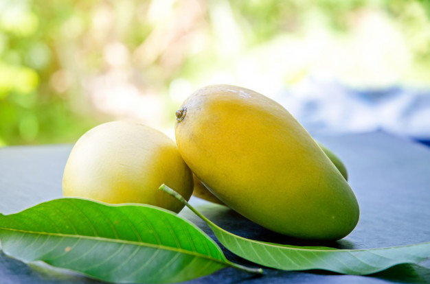 Mango Leaves Benefits