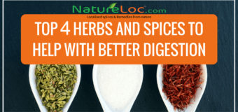 Herbs For Digestion: 4 Herbs That Can Magically Improve Digestion