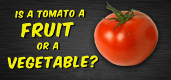 Is Tomato a Fruit or Vegetable? Or are they both? Everything Explained !