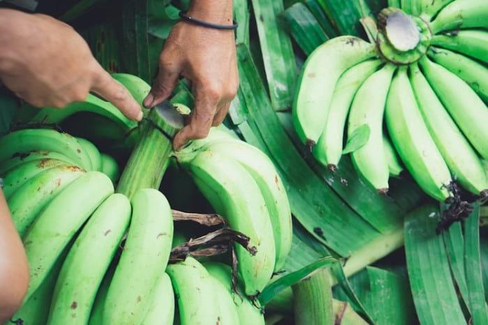 Banana Flour (Ethakaya Podi)