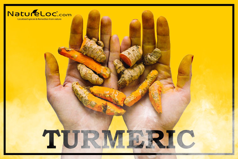 Turmeric (Haldi)