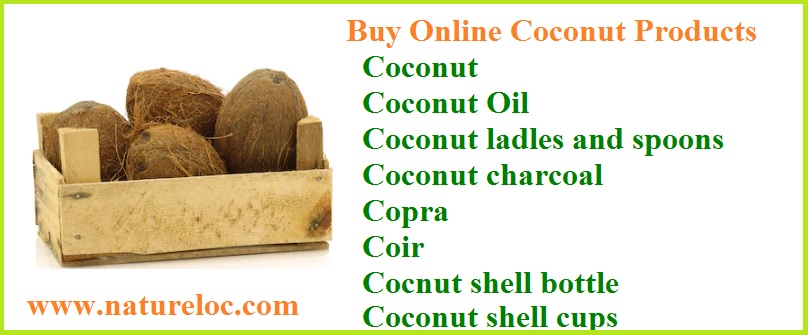 Is coconut a fruit or seed?top 10 uses of coconut