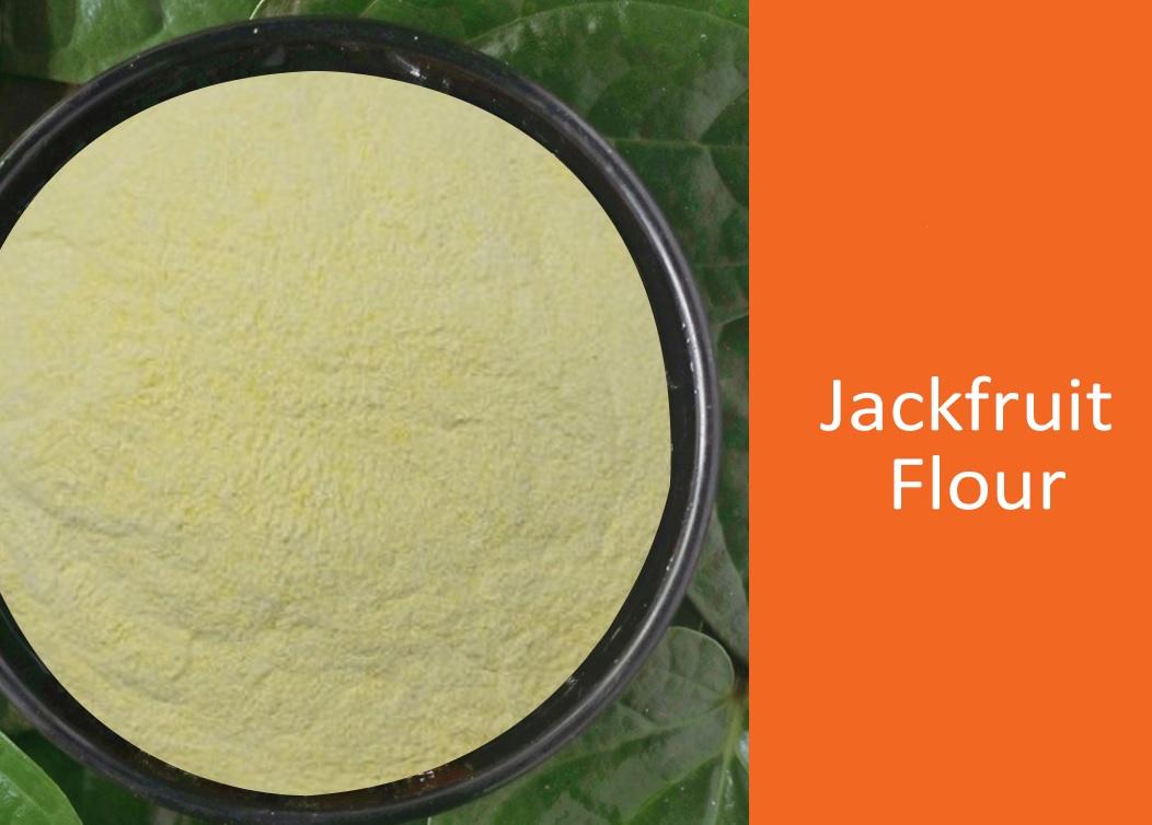 jackfruit flour natureloc